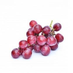 انگور بی دانه قرمز ممتاز