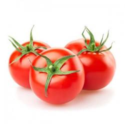 گوجه فرنگی رسمی ممتاز