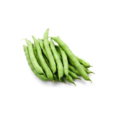 لوبیا سبز ممتاز
