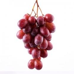 انگور کندری درجه ۱