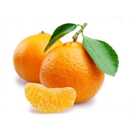 نارنج درجه یک