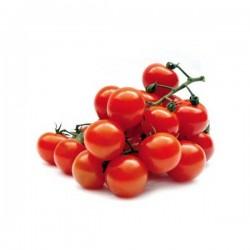 گوجه فرنگی گیلاسی درجه ۱