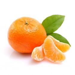 نارنگی ممتاز